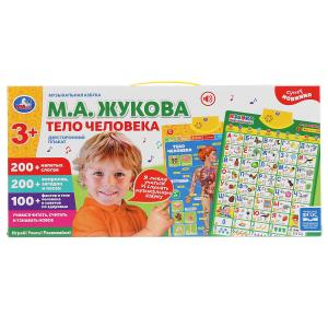Плакат двусторонний на бат. музыкальная азбука М.Жукова, тело человека в кор. Умка в кор.48шт
