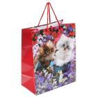 Пакет подарочный глянцевый котята, 26*32*14см в пак. Играем вместе уп-12шт в кор.6уп